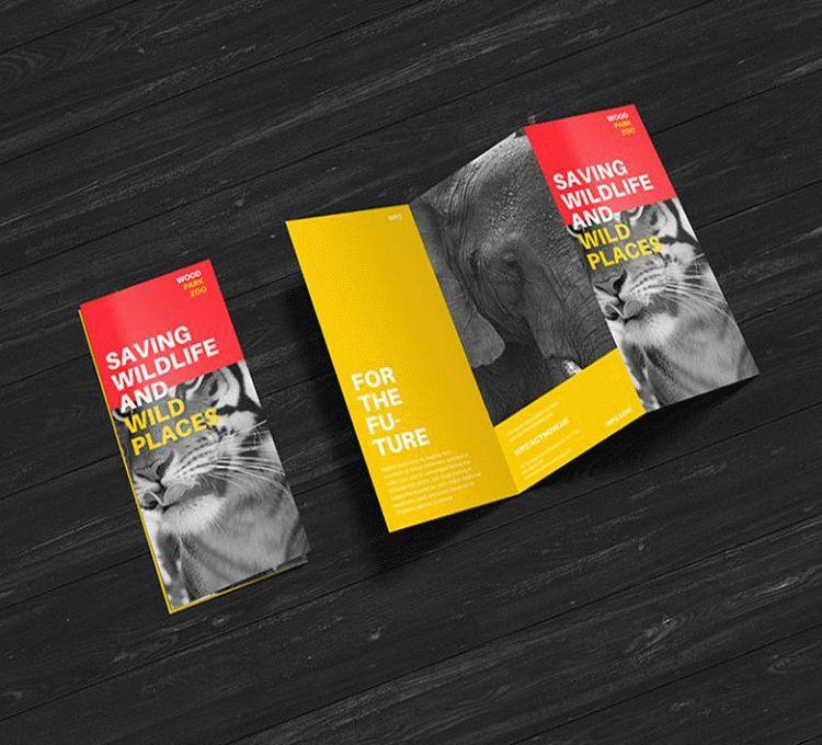 Free Creative Z-Fold Brochure Mockup PSD