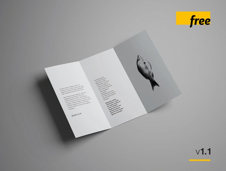 Trifold Brochure Mockup - Folded A4